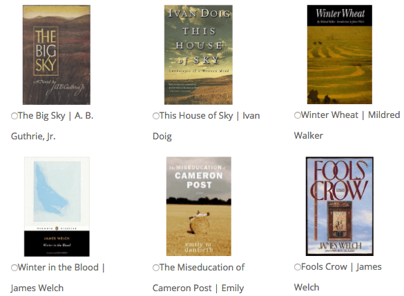 screenshot of book covers and selections from MT Great Read