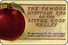 A pamphlet advertising the Famous McIntosh apple of the Bitterroot.