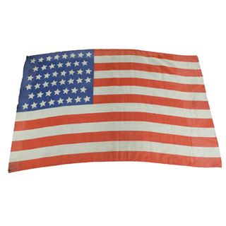 "In honor of #flagday Banjo Cat presents this 20x30"" silk American flag from the Mike Mansfield Collection. This 46-star flag was..."