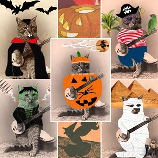 collage of images of Banjo Cat in Halloween costumes